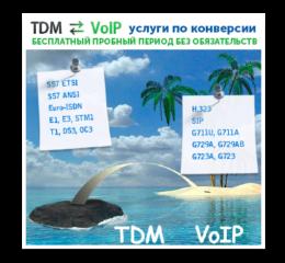 tdm-voip-rus
